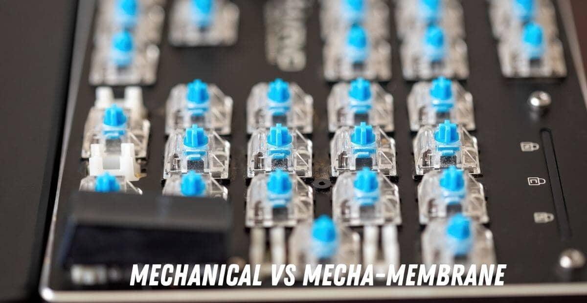 mechanical-vs-mecha-membrane-keyboard