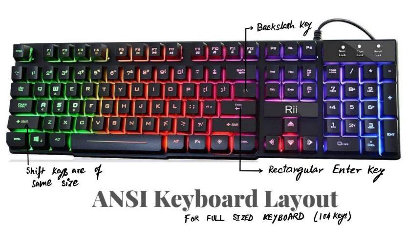 ANSI layout