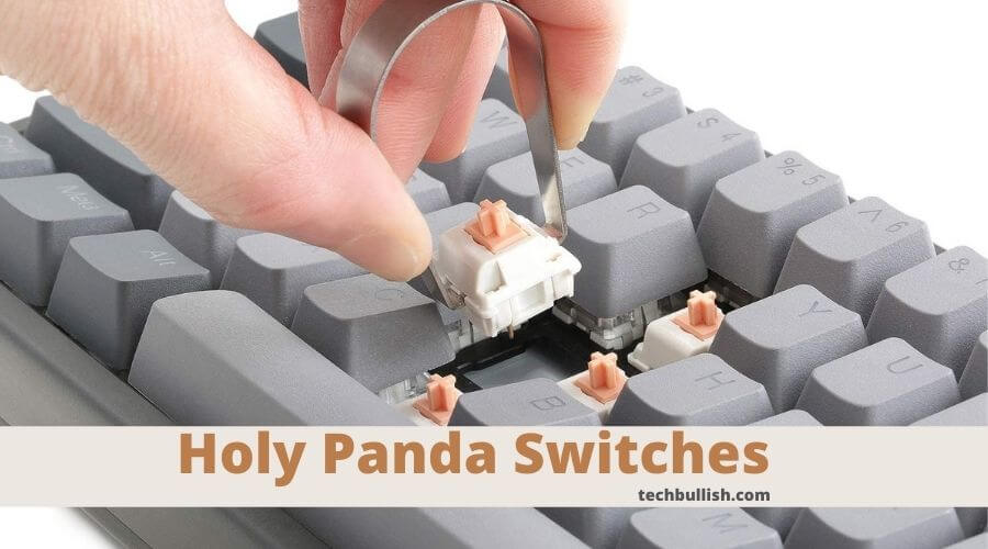 what are holy panda switches